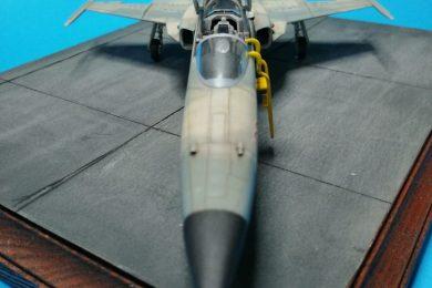 """F5 Northrop """"Aggressor"""""""